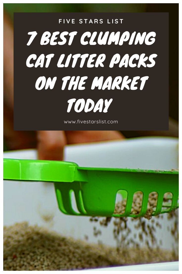 7 Best Clumping Cat Litter Packs on The Market Today