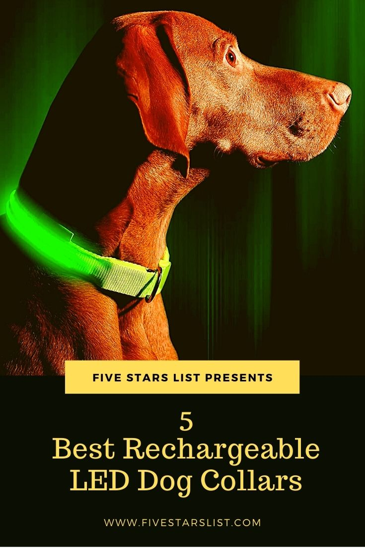 5 Best Rechargeable LED Dog Collars