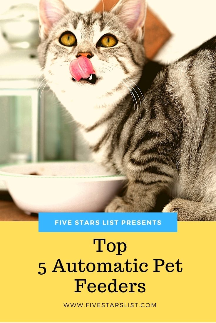 Top 5 Automatic Pet Feeders